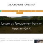 Groupement forestier : la forêt pour diversifier ses investissements
